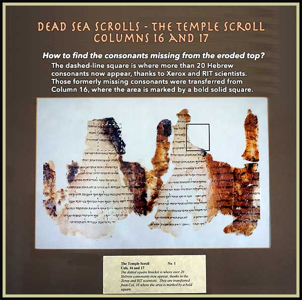 Dead Sea Scrolls - The Temple Scroll - Columns 16 and 17